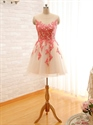 Champagne Sheer Neckline Knee Length Sleeveless Floral Applique Dress