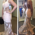 Light Pink Lace Sheath Prom Dress With Sheer Tulle Applique Overlay