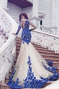 Vintage Long Sleeve Sheer Lace Applique Embellished Tulle Prom Dress