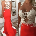 Sleeveless Illusion Applique Bodice Floor Length Mermaid Prom Dress